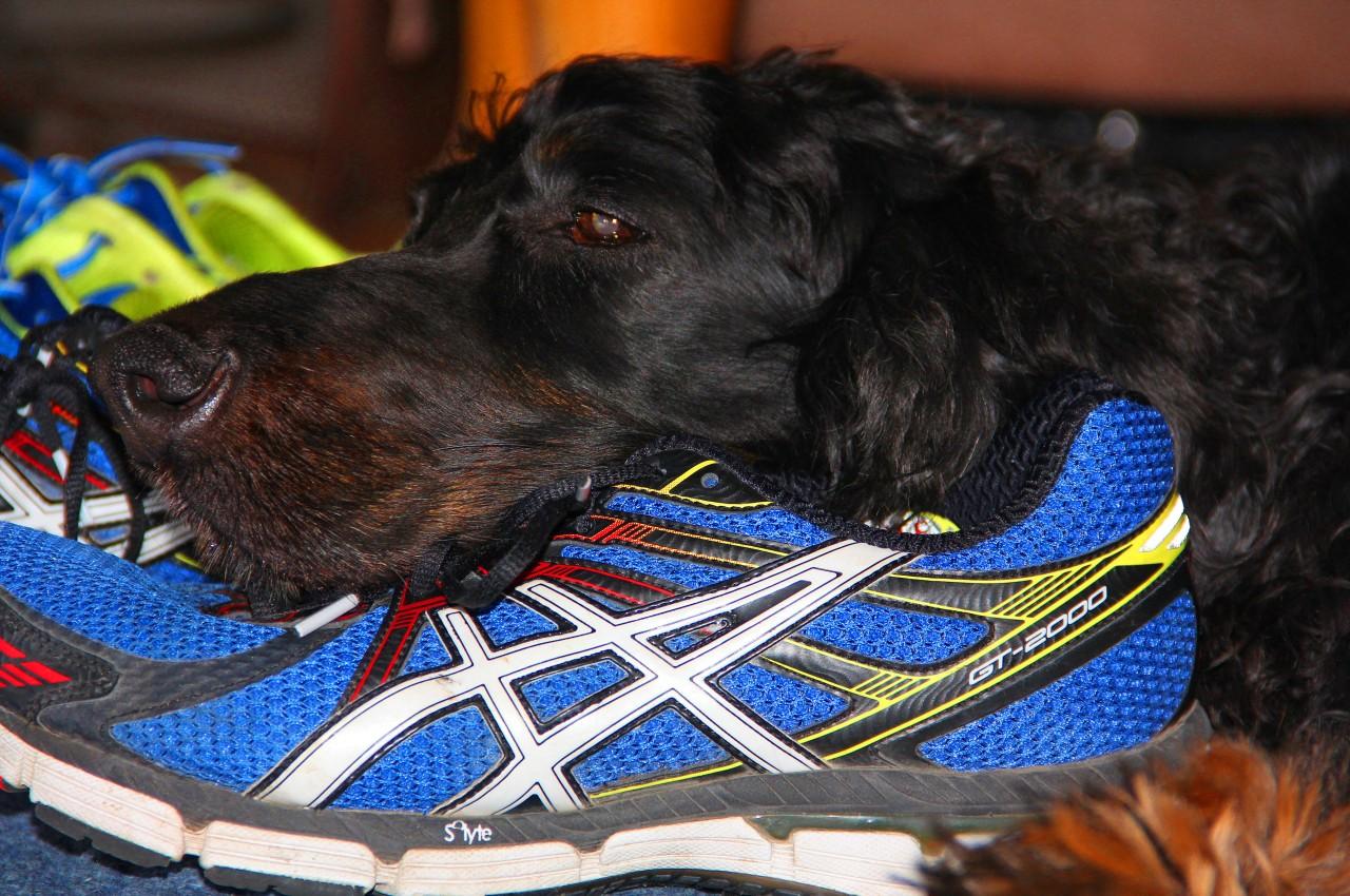 Rainey and the running shoe
