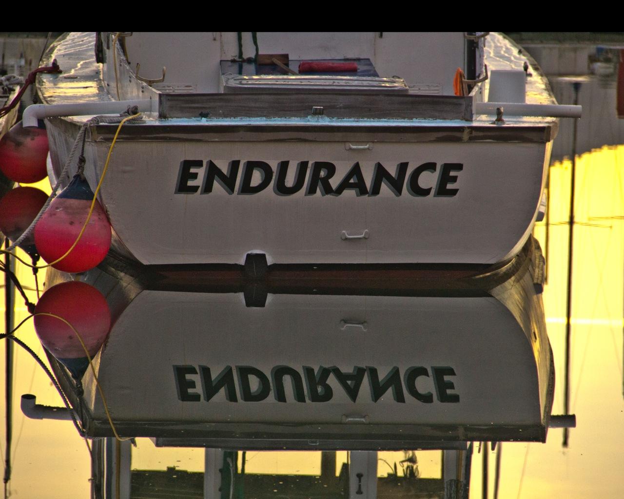 Endurance march 2018