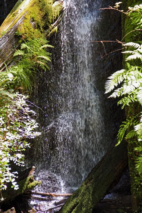 waterfall in the sun