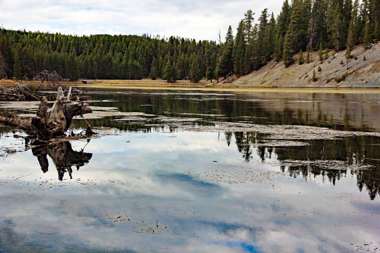 Yellowstone river3