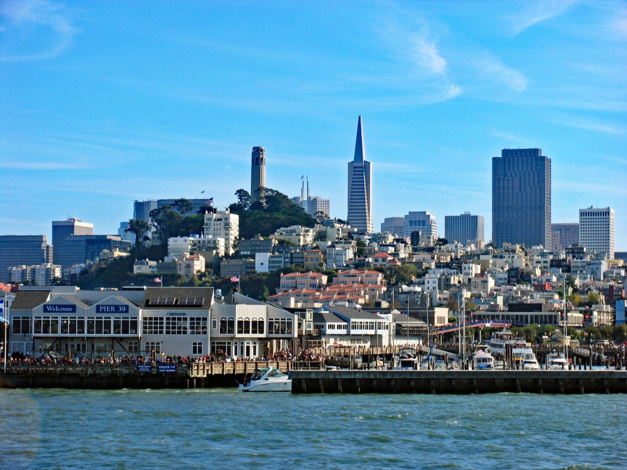 SF Skyline from the bay